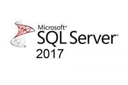 Picture of SQLSvrStd 2017 SNGL OLP NL (228-11135)