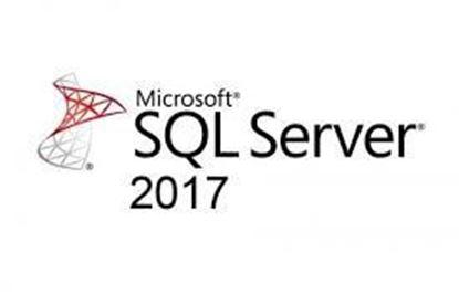 Hình ảnh SQLSvrStd 2017 SNGL OLP NL (228-11135)